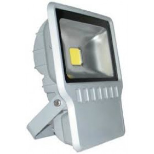 100 Watts LED Flood light